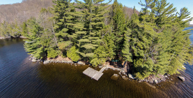 Lake of Bays Clovelly Point